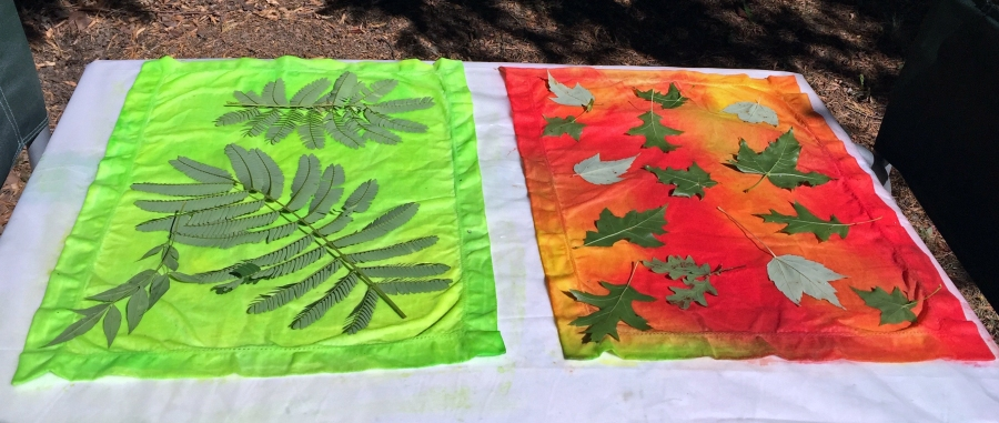 Sun Printing with Transparent Fabric Paint